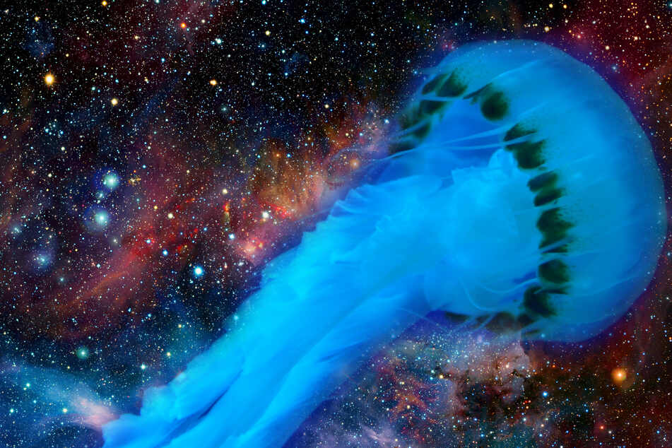 Is there a gigantic jellyfish floating through space? (collage, stock images).