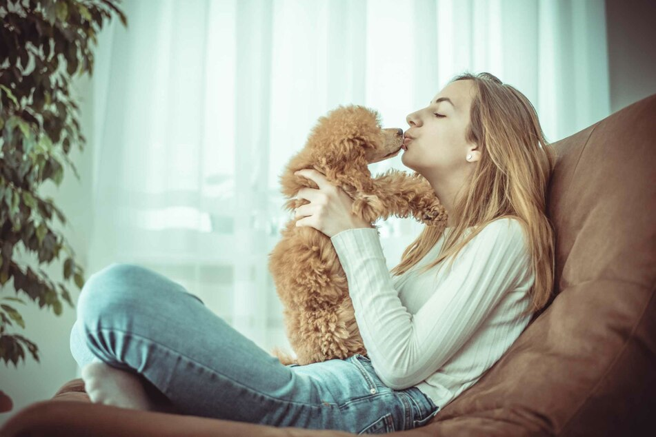 Puppy study shows dogs are genetically wired to interact with humans!