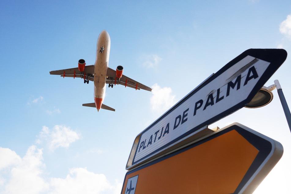 Ein Flugzeug im Landeanflug auf Mallorca. Die Airlines sollen nun ihr Angebot nicht weiter ausbauen, wenn es nach der Bundesregierung geht.