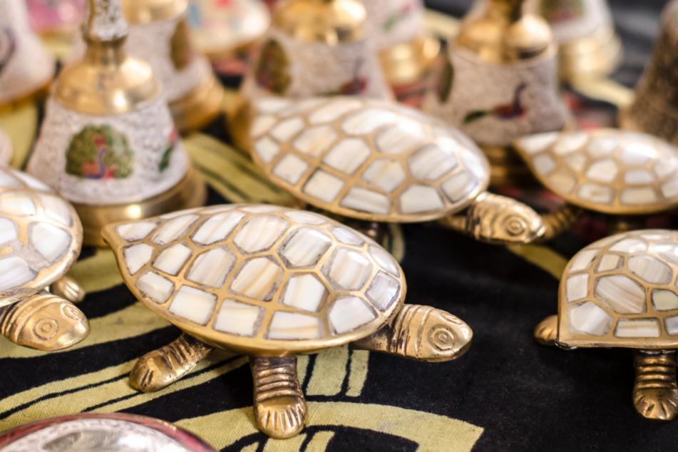 In vielen asiatischen Ländern wie Nepal, Indien und Vietnam gelten Schildkröten als heilig.