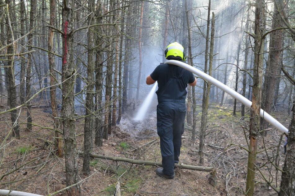 Östlich von Spremberg brannte es zudem großflächig in einem Waldstück.