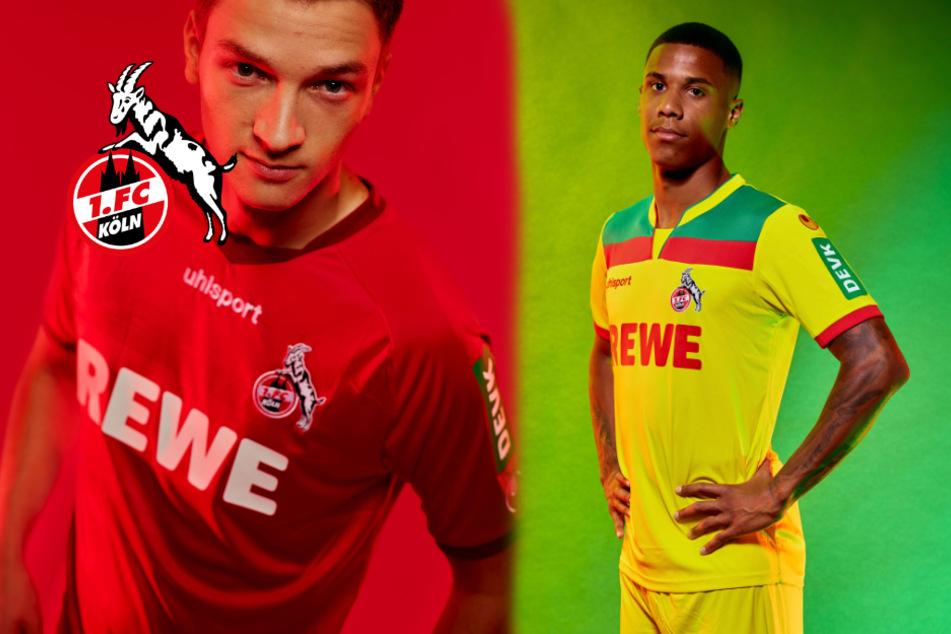 Papageien-Trikot beim 1. FC Köln zurück! Wird es ein Kult-Trikot der Bundesliga?
