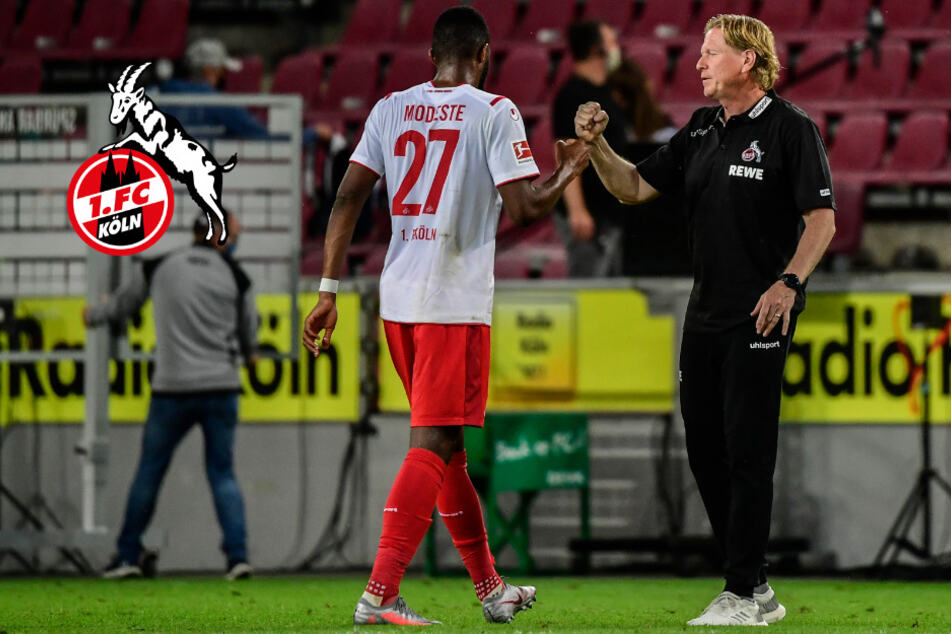 Klassenerhalt ist möglich: Auf wen setzt Köln-Trainer Gisdol gegen Berlin?