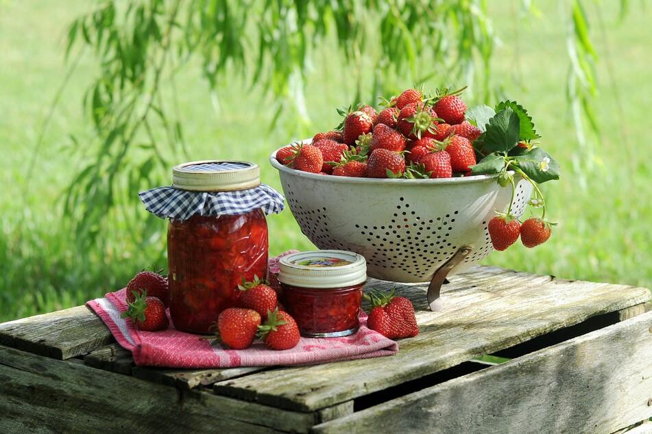 Die Zahl an Rezepten für Erdbeeren ist schier grenzenlos und sorgt für geschmackliche Highlights den ganzen Sommer hinweg.