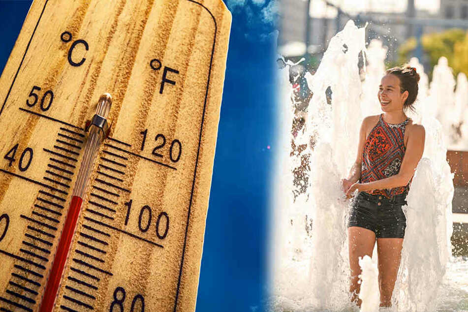 Die erfrischende Brise in den nächsten Tagen sollte man genießen - sie ist von kurzer Dauer!