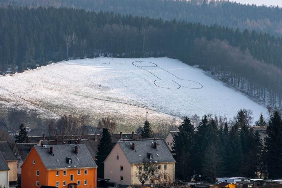Das Original: Vor etwa zwei Wochen ist der etwa 50 Meter große Riesenpenis in Lößnitz entstanden.