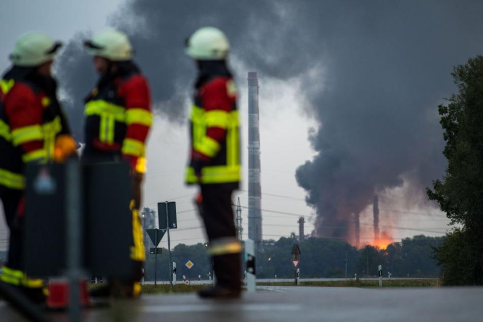 Mehrere Feuerwehrleute sind im Einsatz.