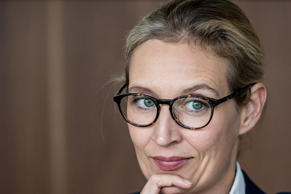In einem Video-Interview erzählt Alice Weidel über Homosexualität, Drogen und ein Tyrannen-Quartett.