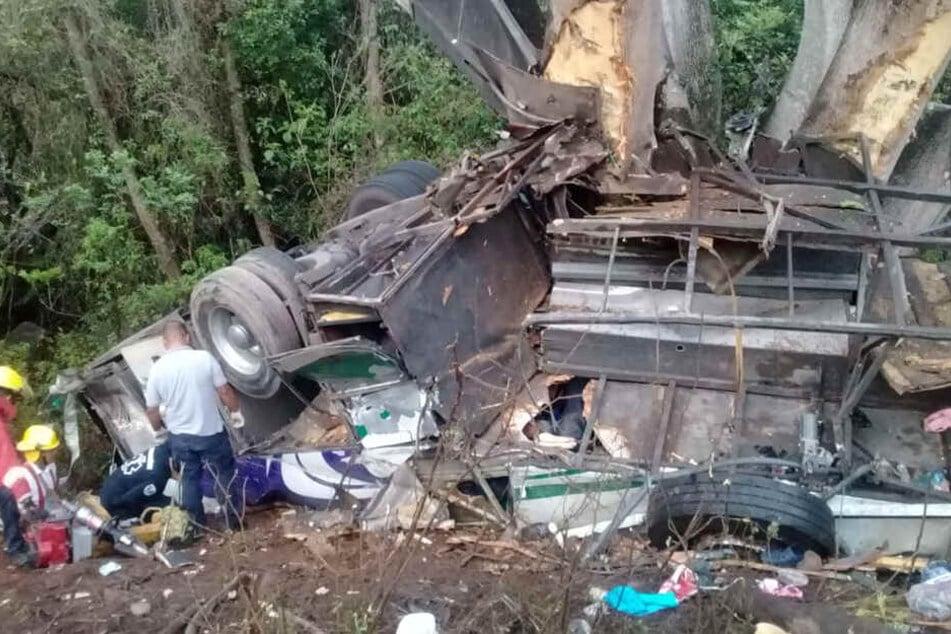 Fahrer eingeschlafen? Bus stürzt um, 15 Urlauber sterben