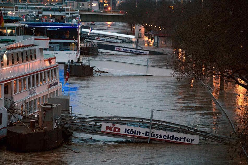 In Köln wird heute der Höchststand des Rhein-Hochwassers erwartet.