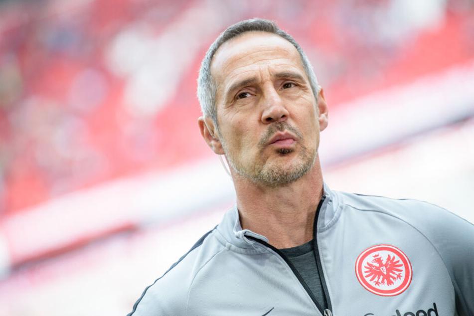 Eintracht Frankfurts Coach Adi Hütter.