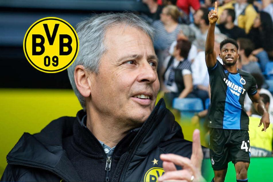 Als Sancho-Ersatz: BVB-Trainer Favre wohl scharf auf diesen Youngster