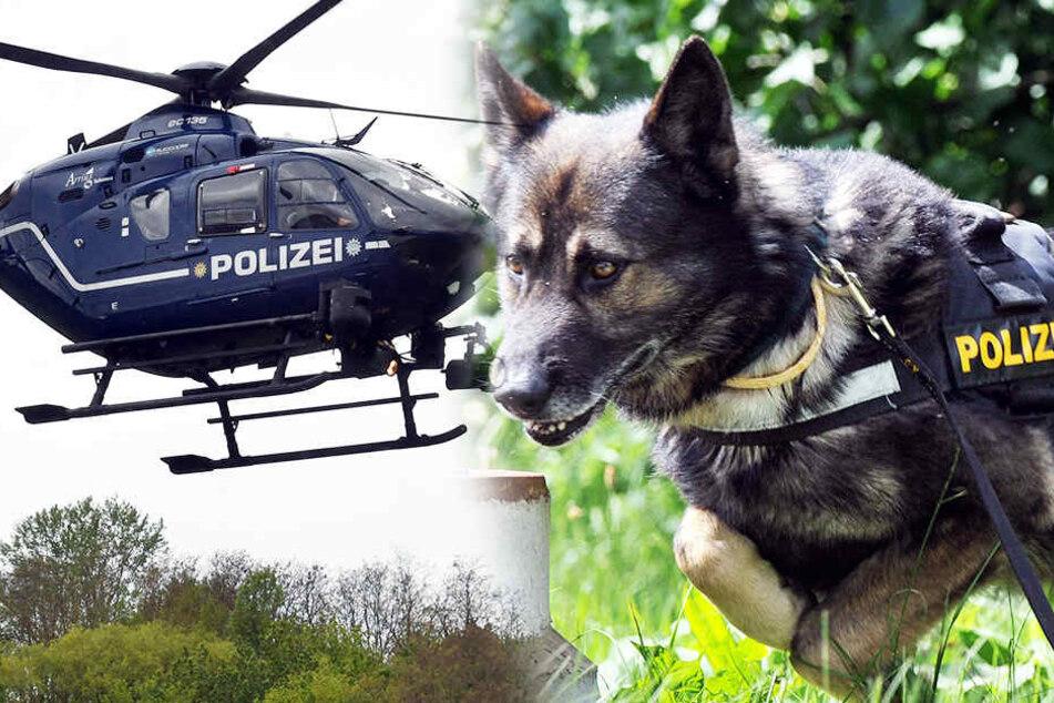 Hubschrauber und Hund war es zu verdanken, dass die Polizei die Diebe gleich schnappen konnte.