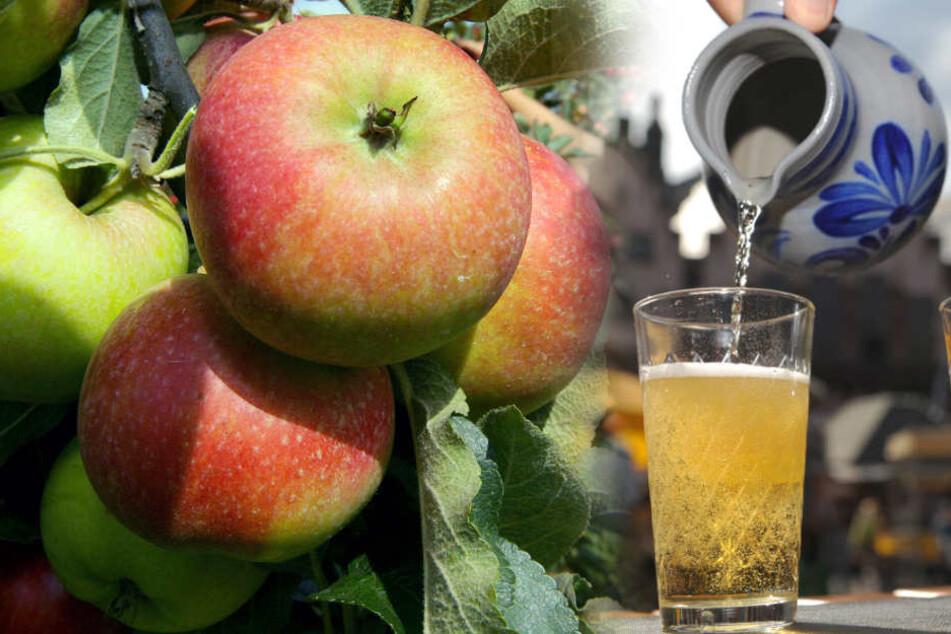 Keltereien fordern Obstwiesen-Besitzer auf, ihre Äpfel nicht vergammeln zu lassen. (Symbolbild)