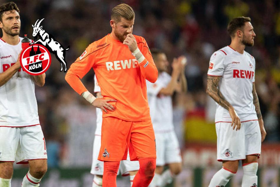 1. FC Köln mit Verletzungspech vor Derby gegen Gladbach!