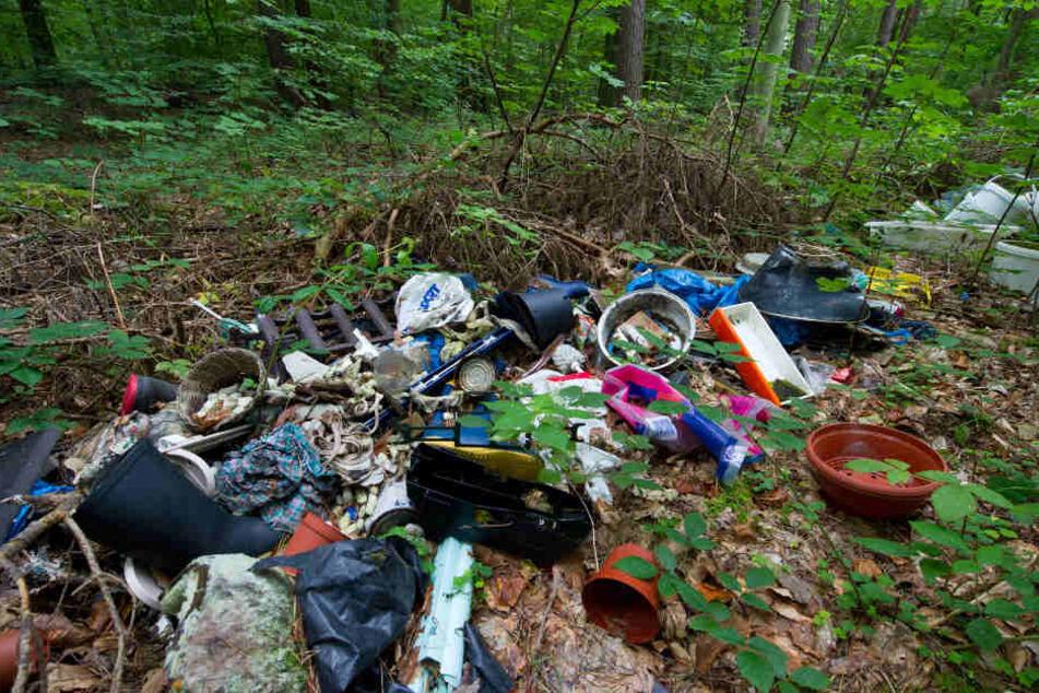 Illegal abgeladener Müll am Waldrand.