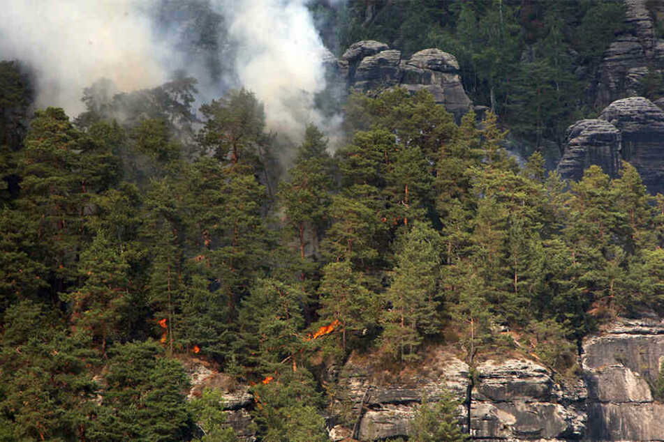 August 2018: Waldbrand im Nationalpark Sächsische Schweiz nahe der Bastei zu sehen.