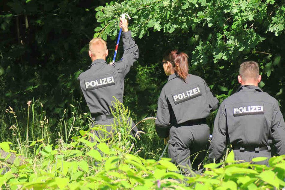 Polizisten suchten am Mittwoch in dem in der Nähe der A9 gelegenen Veldensteiner Forst nach der Leiche.