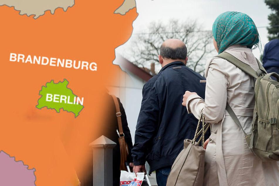 Über 400 Asylbewerber verlassen Brandenburg auf eigene Faust