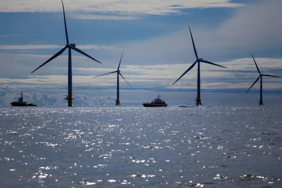 """Serviceboote bringen Monteuere zu den Windrädern des Offshore-Windparks """"Baltic 2""""."""