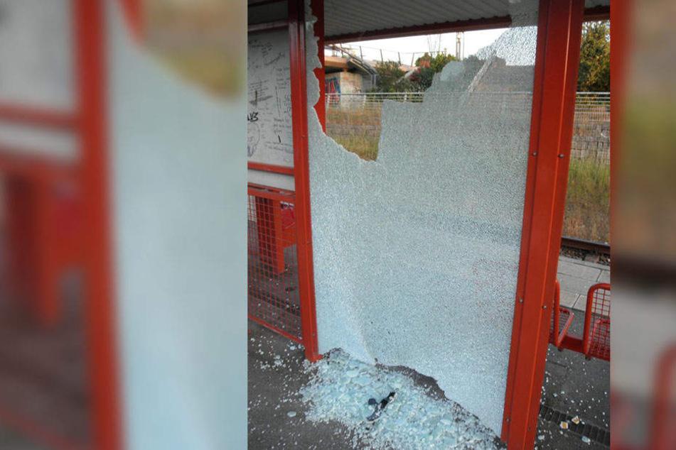 Ein 12-Jähriger zerstörte die Scheibe einer Haltestelle.