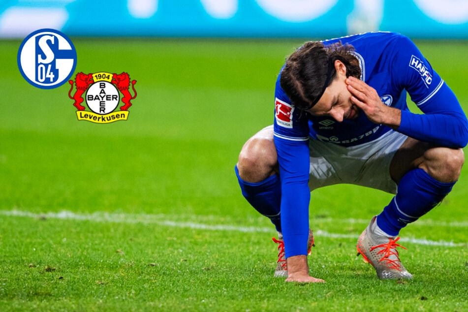 Schalke 04 am Boden! Knappen kassieren gegen Leverkusen deutliche Pleite