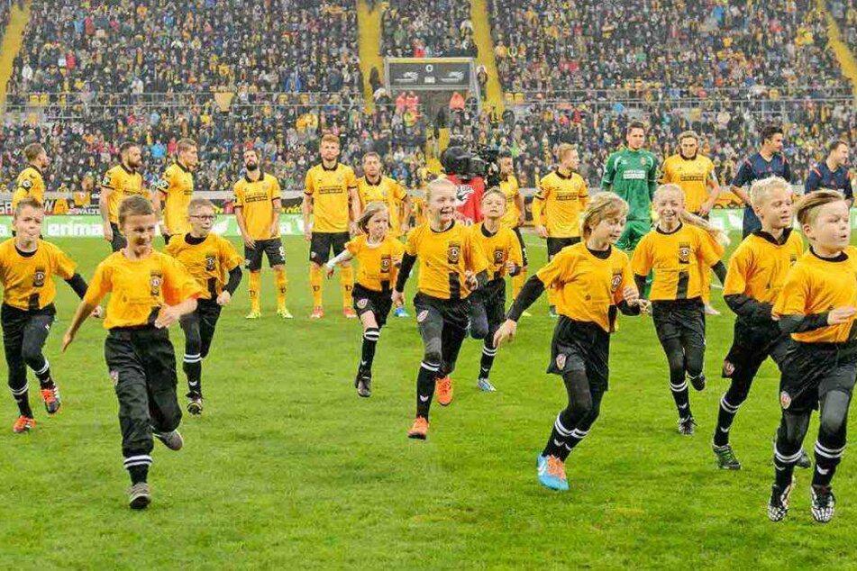 So Leicht Wirst Du Wieder Einlaufkind Bei Dynamo Dresden
