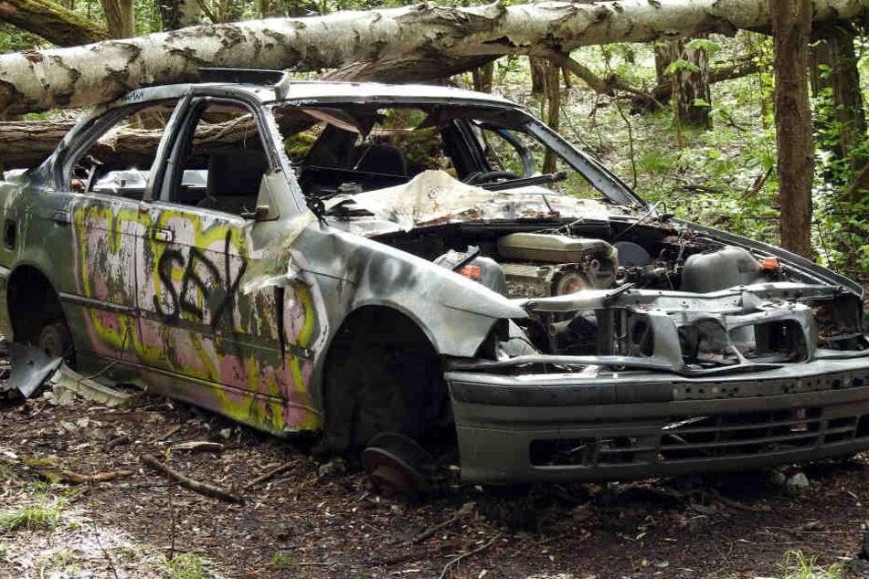 Eine Gefahr für Abenteuer-Kids und die Umwelt: Dieses Wrack steht mitten im  dichten Wald.