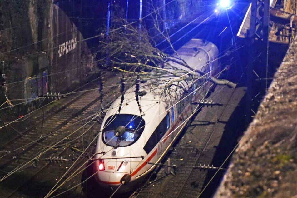 Ein umgestürzter Baum liegt auf einem ICE. (Symbolbild)