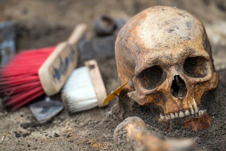 Munitionsexperten haben im Zuge von Bauarbeiten an einem Radweg, die Knochenteile entdeckt und dem Volksbund gemeldet. (Symbolbild)