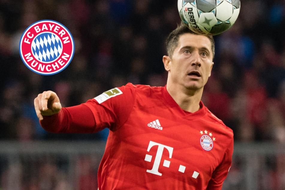 Bericht: FC Bayern München räumt bei UEFA-Wahl gleich vier Mal ab!