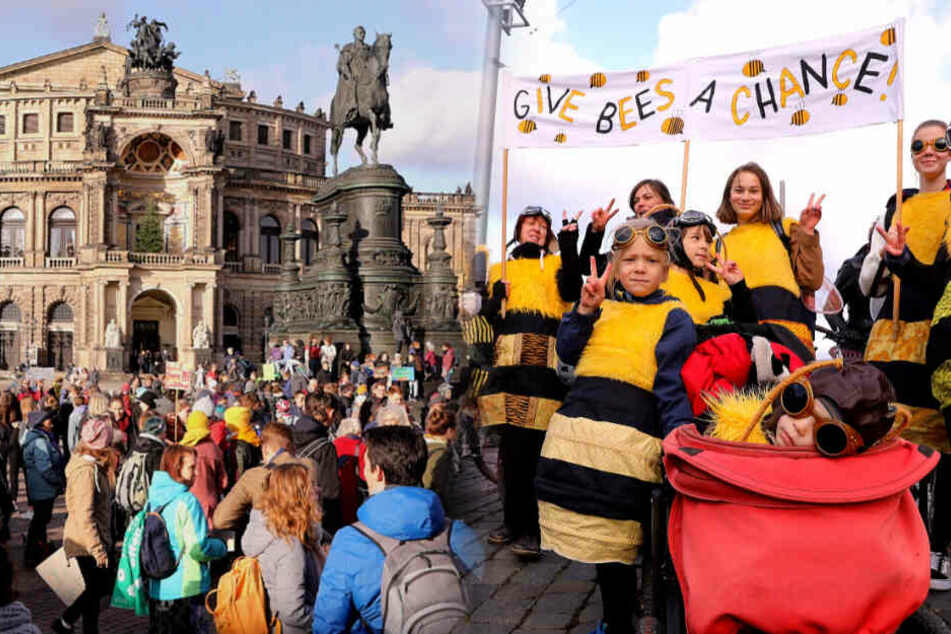 Fridays for Future Dresden: Demonstranten fühlen sich von Polizei provoziert