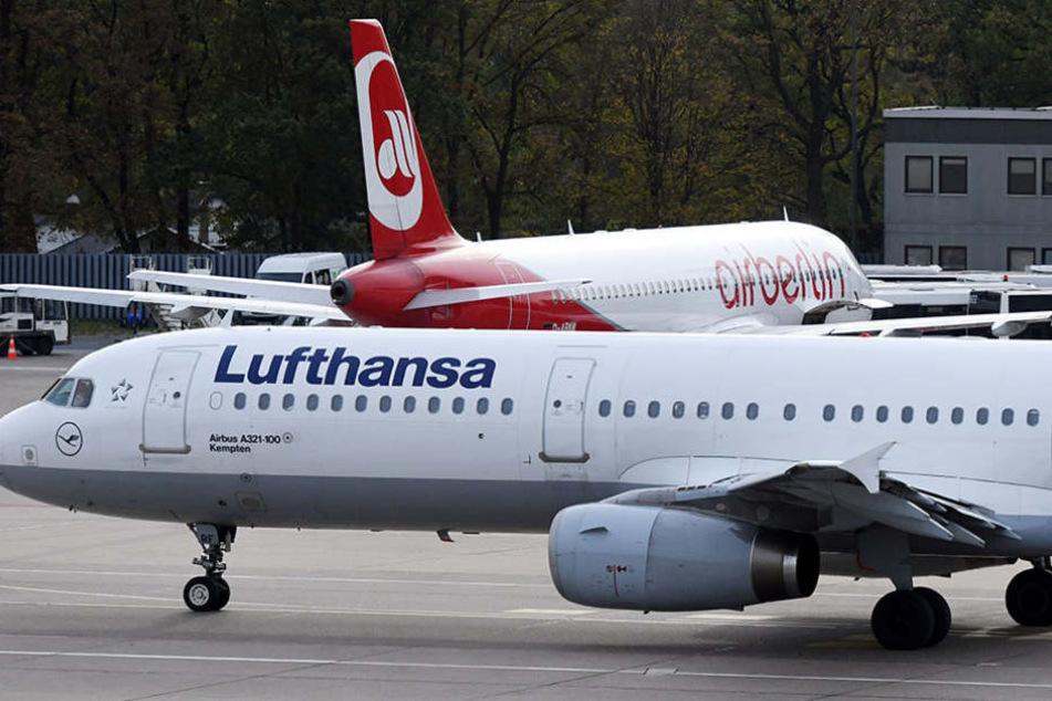 Lufthansa hat den Großteil der insolventen Airline aufgekauft. Viele Air-Berlin-Mitarbeiter werden dort arbeiten können.