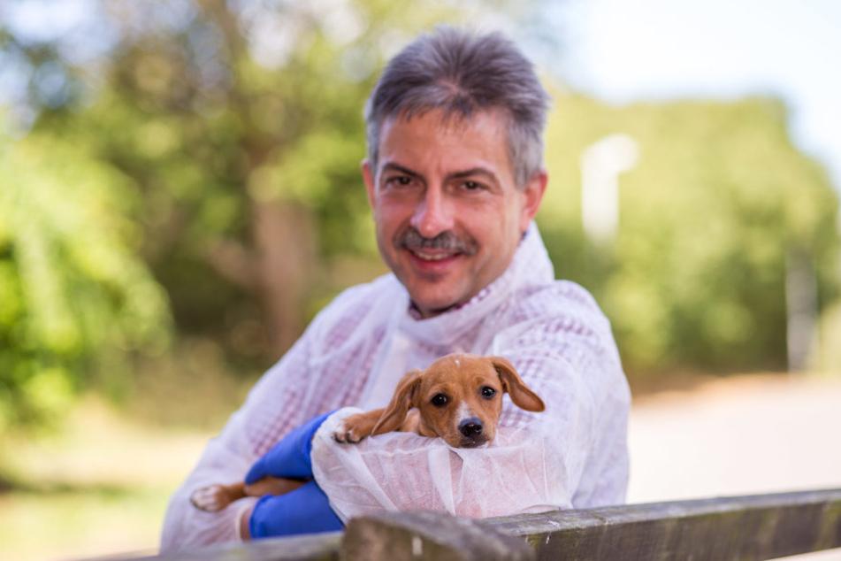 Hält seinen Neuzugang fürsorglich im Arm: Leipzigs Tierheim-Chef Michael  Sperlich mit dem von der Polizei beschlagnahmten Hunde-Baby.