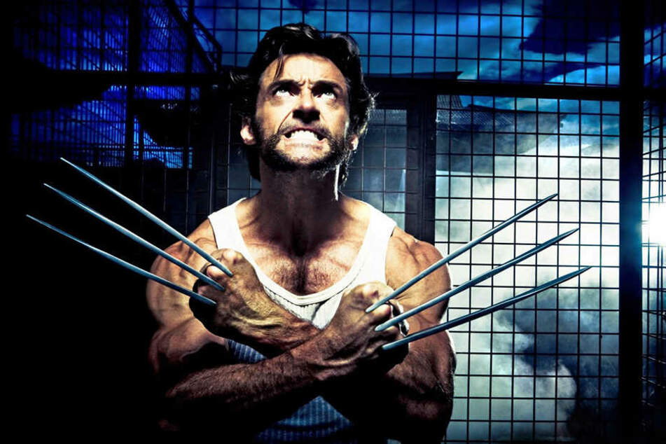 Hugh Jackman in der Rolle, die ihn zum Superstar machte: Wolverine - der Mann mit den unverkennbaren Stahlklingen, bemerkenswerten Selbstheilungskräften, ruppigem Charme und einer Portion trockenem Humor.