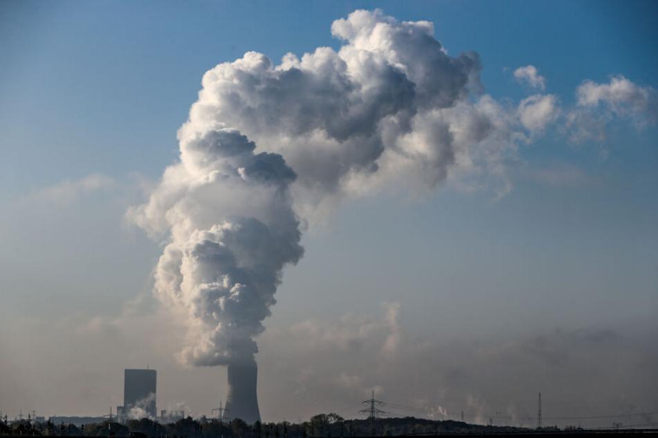 Mit mehreren Demonstrationen wollen Klimaaktivisten am Wochenende für den sofortigen Braunkohle-Ausstieg protestieren. Fridays for Future plant eine Demo zum Kraftwerk Lippendorf.