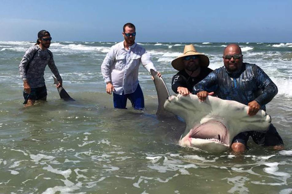 Hier posiert Poco Cedillo noch stolz mit seinem Fang. Doch womit er nicht gerechnet hatte: Das Tier verendete am Strand.