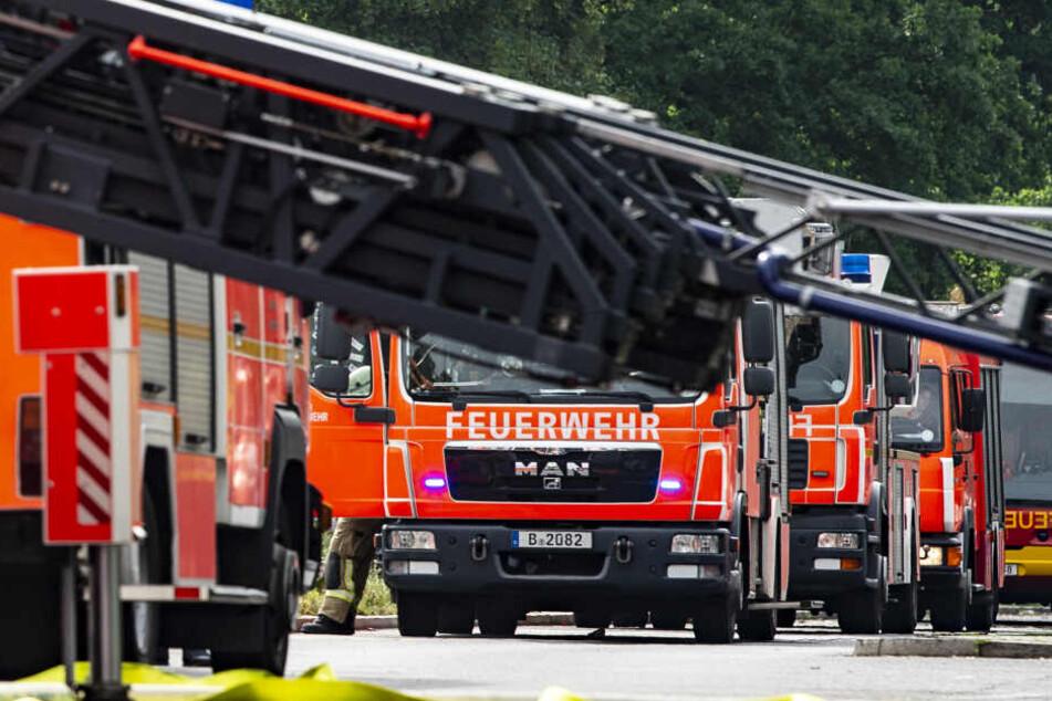 Innerhalb von 24 Stunden brannte es an mehreren Stellen in Berlin. (Symbolbild)