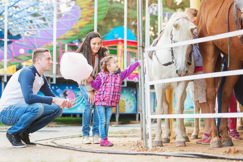 Nicht mehr zeitgemäß: SPD geht gegen Ponyreitbahnen auf Jahrmärkten vor