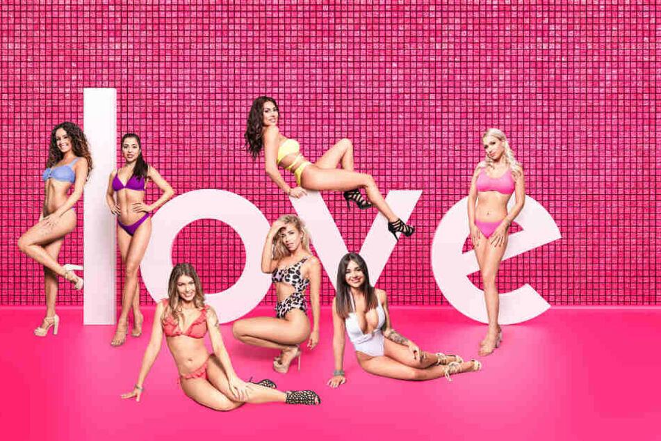 Diese sieben Ladies sind auf der Suche nach ihrem Traummann.