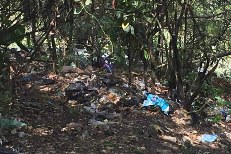 Deutscher Radler durch Kopfschuss in Mexiko getötet