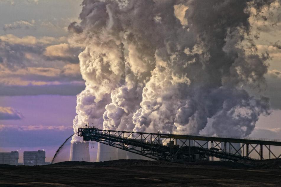Braunkohlebagger im Tagebau Nochten.