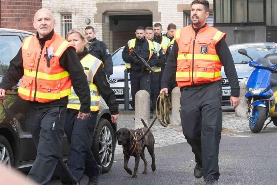 Mit Spürhunden machte sich die Polizei auf die Suche nach den Tätern.