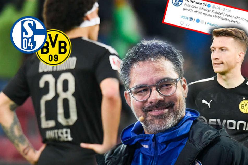 BVB mit neuem Brustsponsor: So köstlich reagiert Erzfeind Schalke 04!