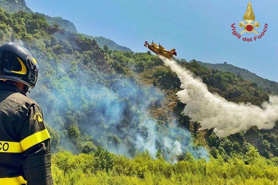 Ein Löschflugzeug ist in der Region Kalabrien im Einsatz. Die Region gehört zu den am stärksten von den Waldbränden betroffenen Regionen. Die Temperaturen liegen teils über 40 Grad Celsius.