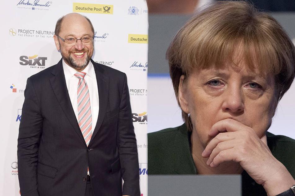 Bringt Martin Schulz Angela Merkel ins Schwitzen?