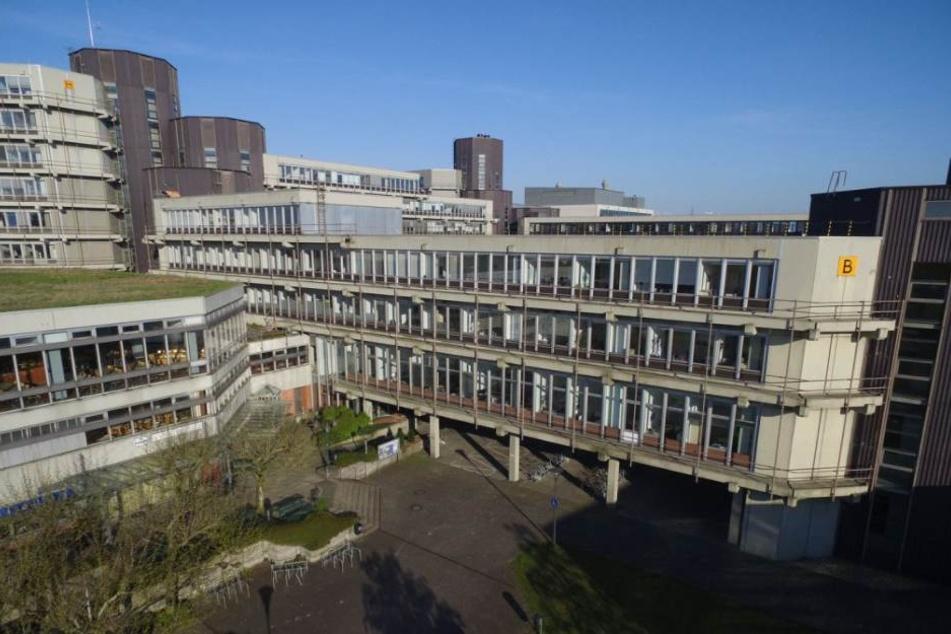 Die Uni Paderborn verzeichnet bundesweit den höchsten Frauenanteil bei den Beschäftigten.