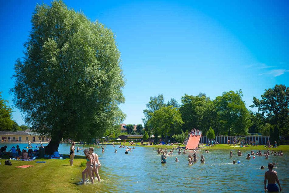 Im Naturbad Mockritz darf weiter geplanscht werden.