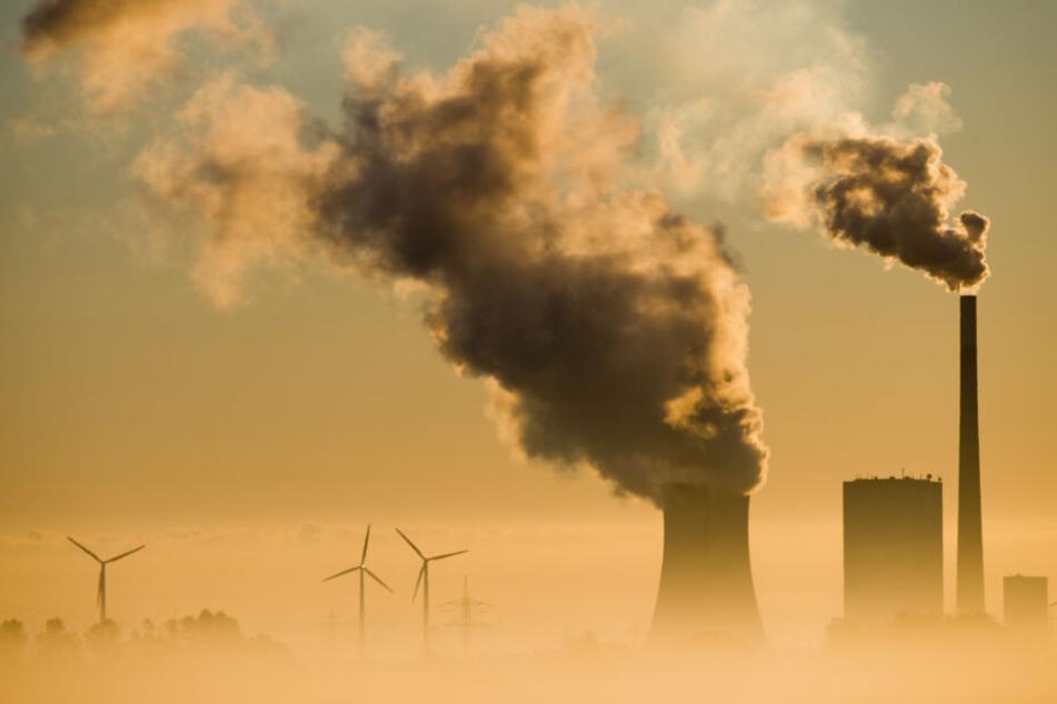 Eon Kohlekraftwerk vor Windrädern in Niedersachsen.