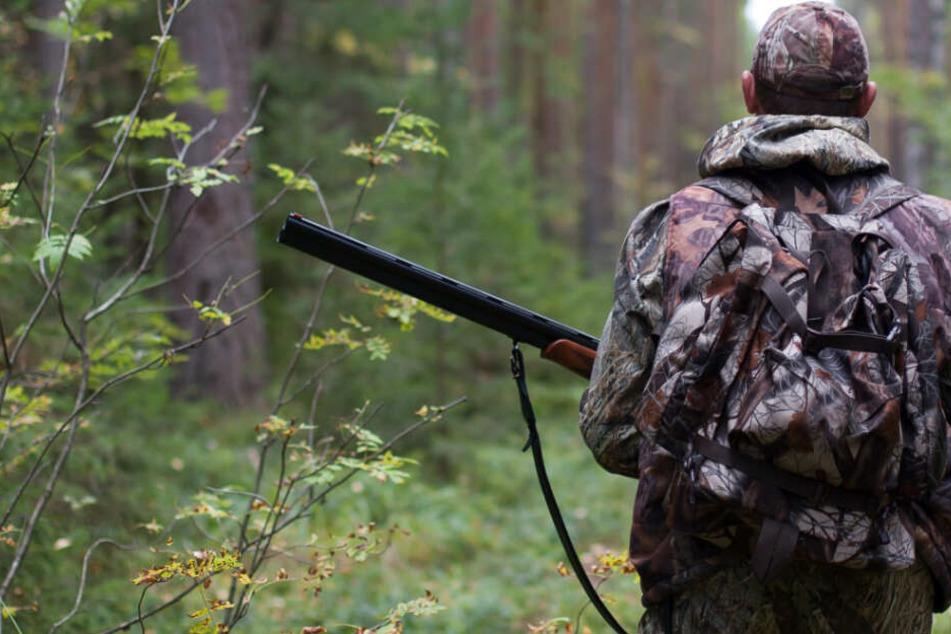 Hund wird von Jäger erschossen, dann eskaliert die Situation